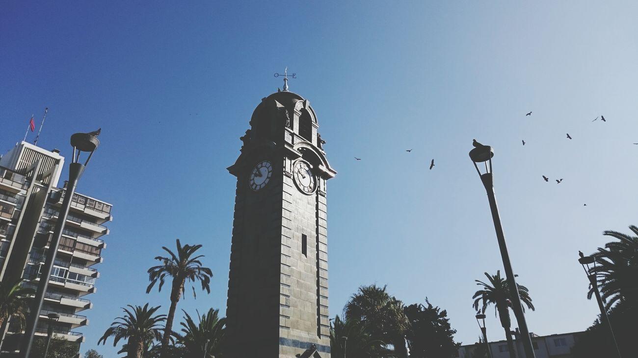 Antofagasta TICTOC City