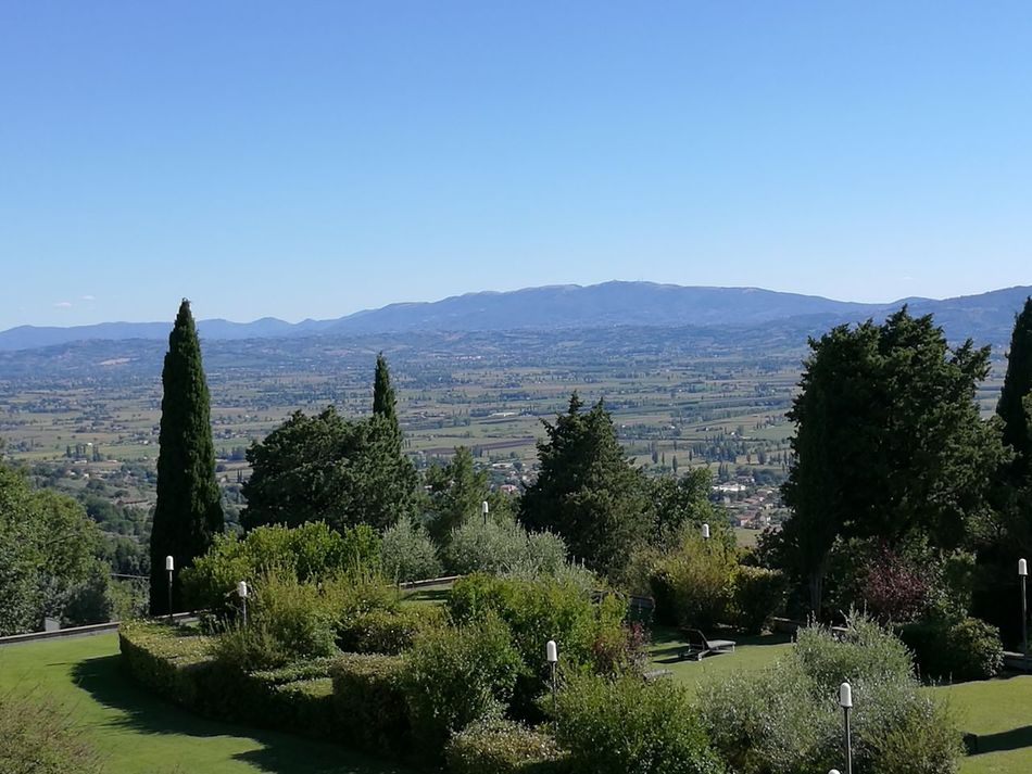 Assisi, Italy Nature Landscape Evergreen Tree Beauty In Nature Tree Mountain