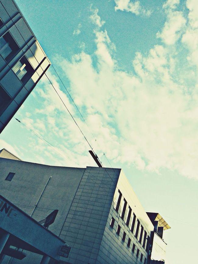Lines, 2014. Lines Net Building Street