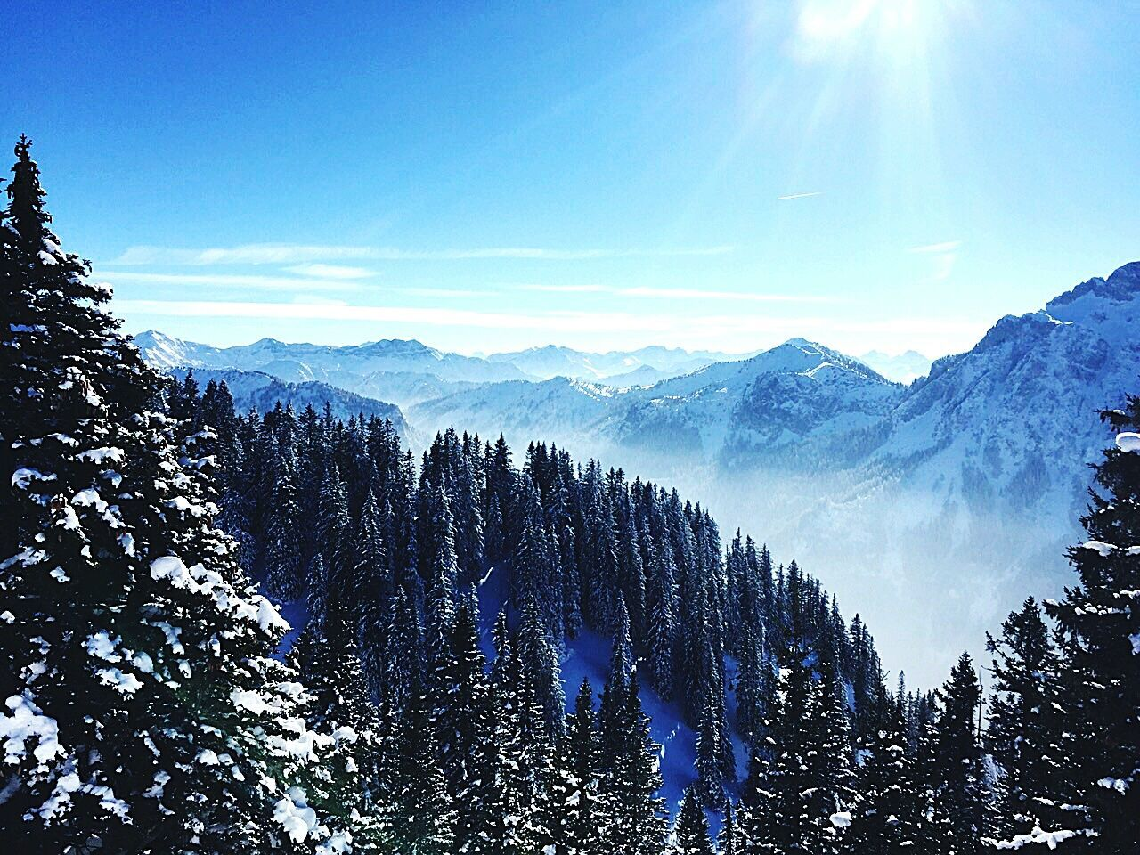 Scenic View Of Trees And Mountains Covered With Snow