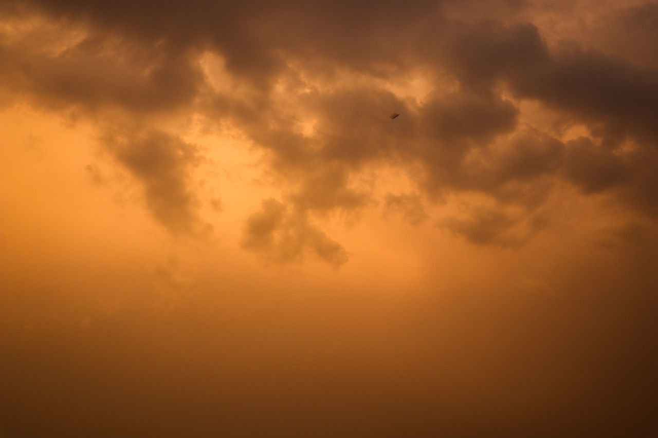 Backgrounds Gold Colored Textured  Abstract Sunset Full Frame No People Gold Bird Outdoors Painted Image Sky Nature Day