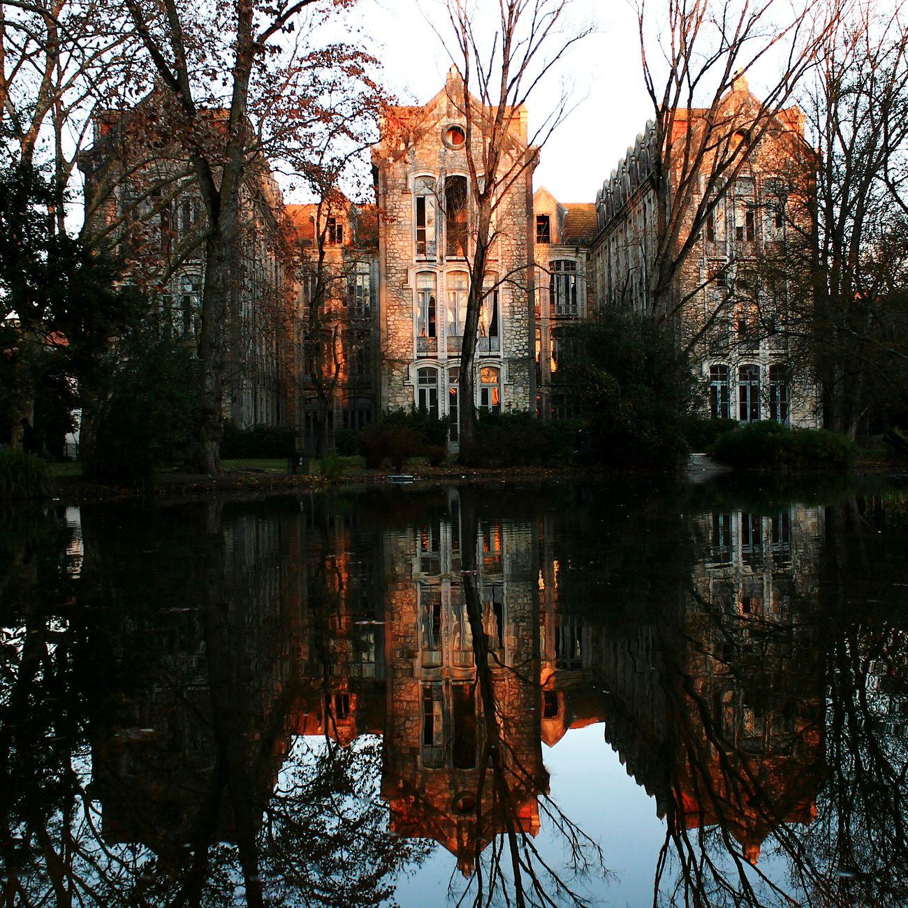 Caldasdarainha Portugaldenorteasul Park Reflection Water Reflections Eye4photography