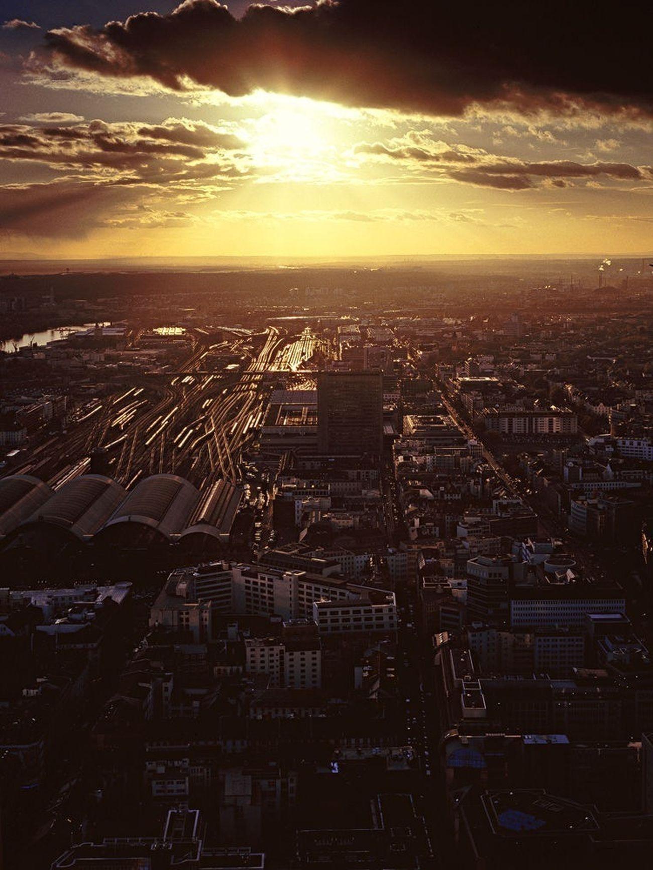 Frankfurt, Germany shot on Fuji Provia 100F Urban Landscape Analogue Photography Frankfurt Am Main Skyline Frankfurt