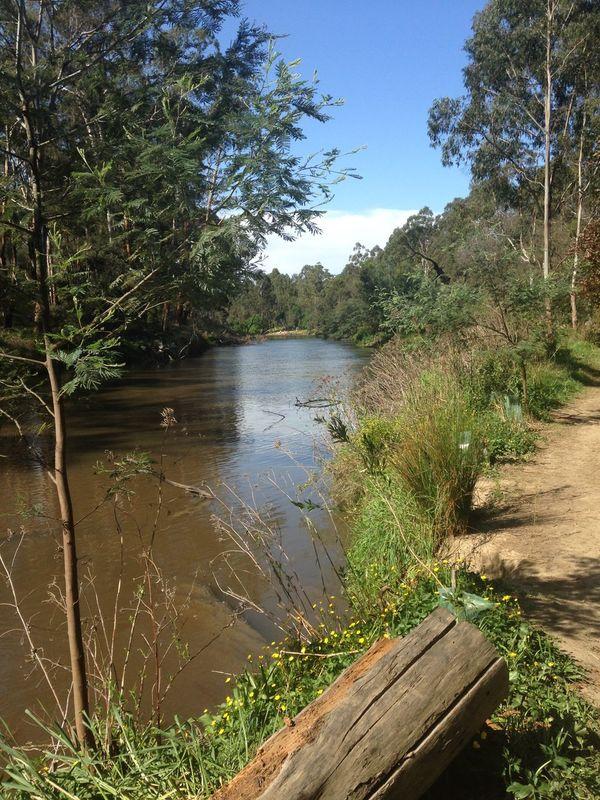 Yarra River Warrandyte