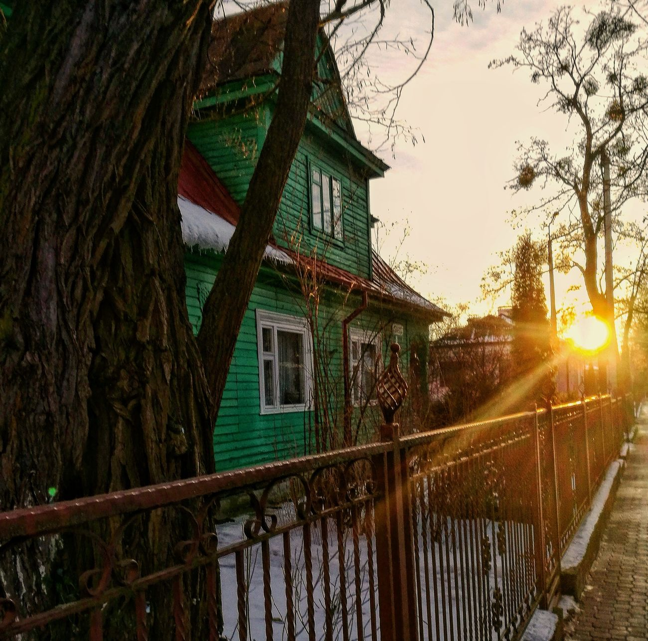 Сонейка вясновае ў Берасці Brestgram Belarus Belarusgram Architecture Belarusnow Belarus Nature Green Brest City Winter January2017