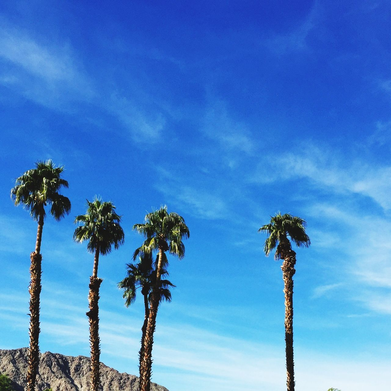 Beautiful stock photos of hollywood, Blue, Cloud, Day, La Quinta
