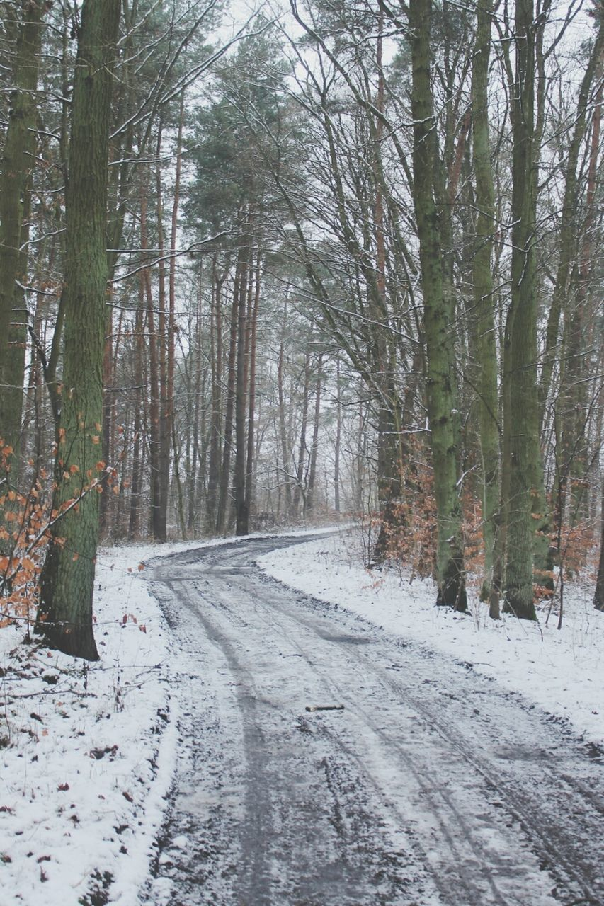 snow, winter, cold temperature, nature, the way forward, tranquil scene, weather, forest, tree, road, no people, tranquility, day, outdoors, scenics, beauty in nature