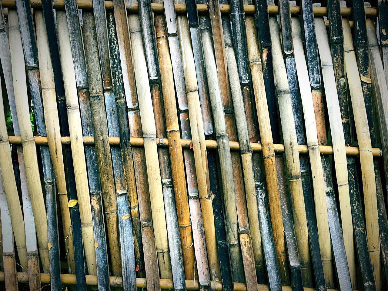 Bamboo Bamboo Art Hello World Taking Photos Capture The Moment Snapshots Of Life Photography Nature Bamboo Fence