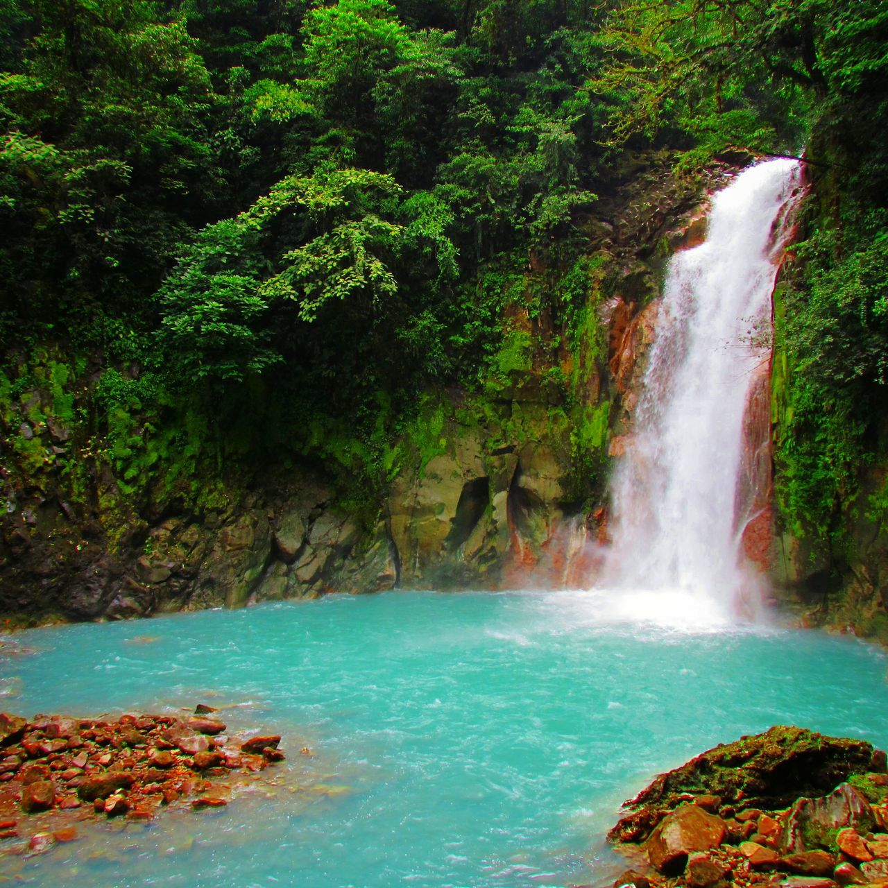 They say this is where god washed his brushes after he painted the Sky😍😍 Rio Celeste Favorite Places Eye4photography  Adventure Girl ✌🙈🌊 Showcase July Costa Rica Central America Nature Photography Nature_collection Beautiful Traveling Outdoor Photography EyeEm Best Shots Blue Wave Rainforest Trees Costa Rica Y Su Naturaleza Travel Colour Of Life