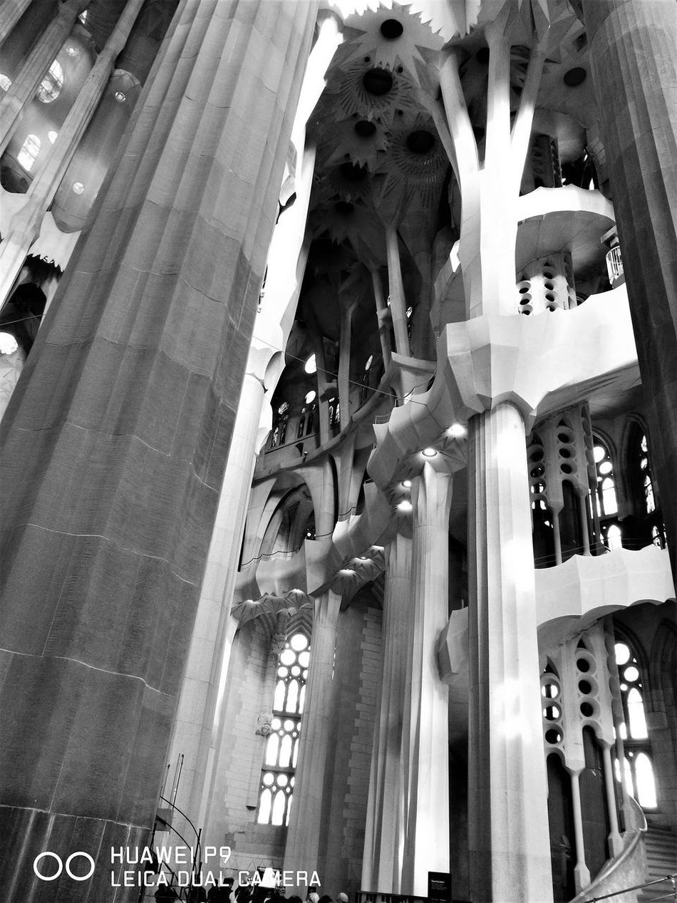Architectural Column Architecture Blackandwhite Photography Built Structure Day Gaudì Architecture Work History Indoor Photography Low Angle View No People Religion Sagradafamilia Sagradafamiliachurch Travel Destinations