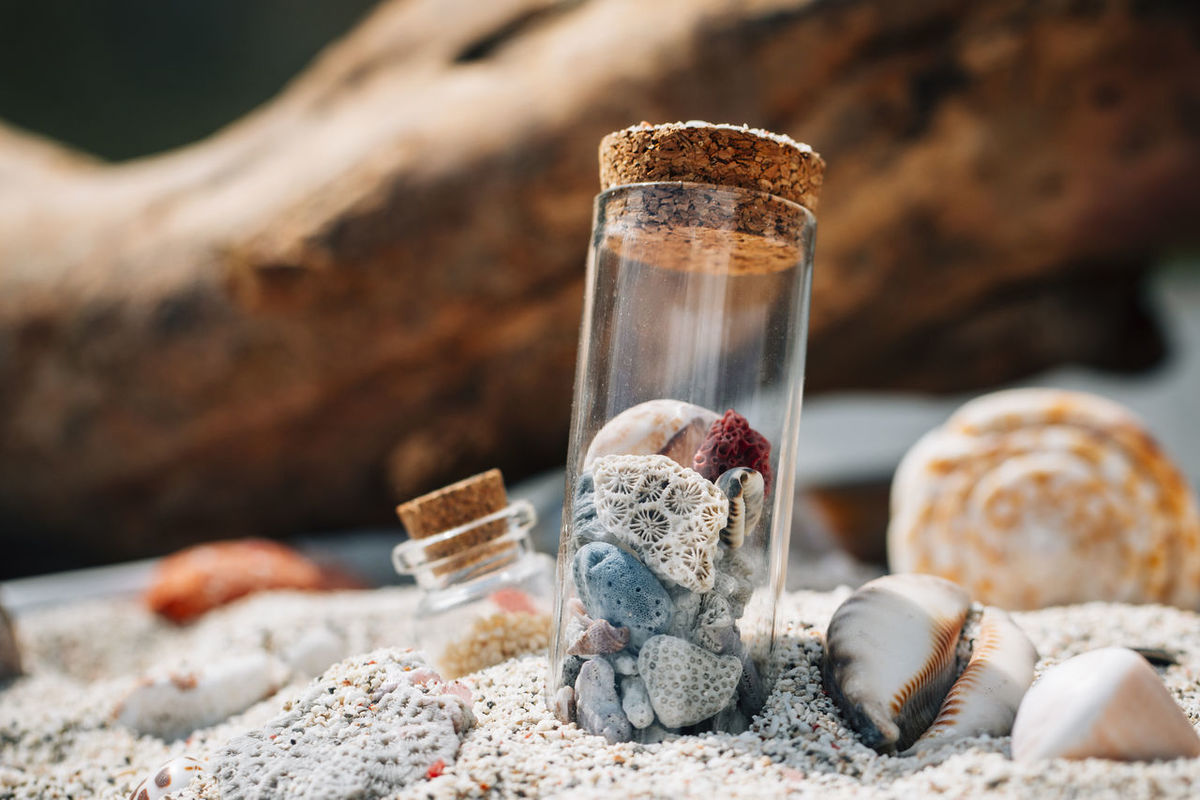 ### Beach in a bottle / Beach to go Pt. II ### So here is the second picture from my little experiment. The Bottle was prepared in a small authentic scene. It was a fun thing to do, hope you like it. Beach Beach Photography Bottle Close-up Focus On Foreground Selective Focus Shell Shells Shells🐚 Single Object Still Life Sunlight Test Tube Tube Wood - Material The Week On EyeEm Editors Picks