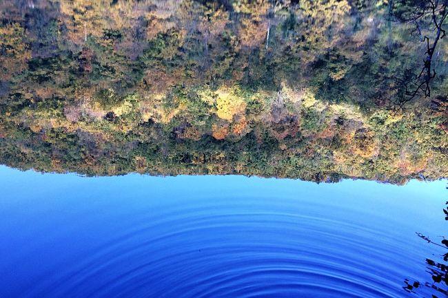 Reflection Water Reflections Water Lake Bükk Hungry Autumn Fall Fall Beauty Trees