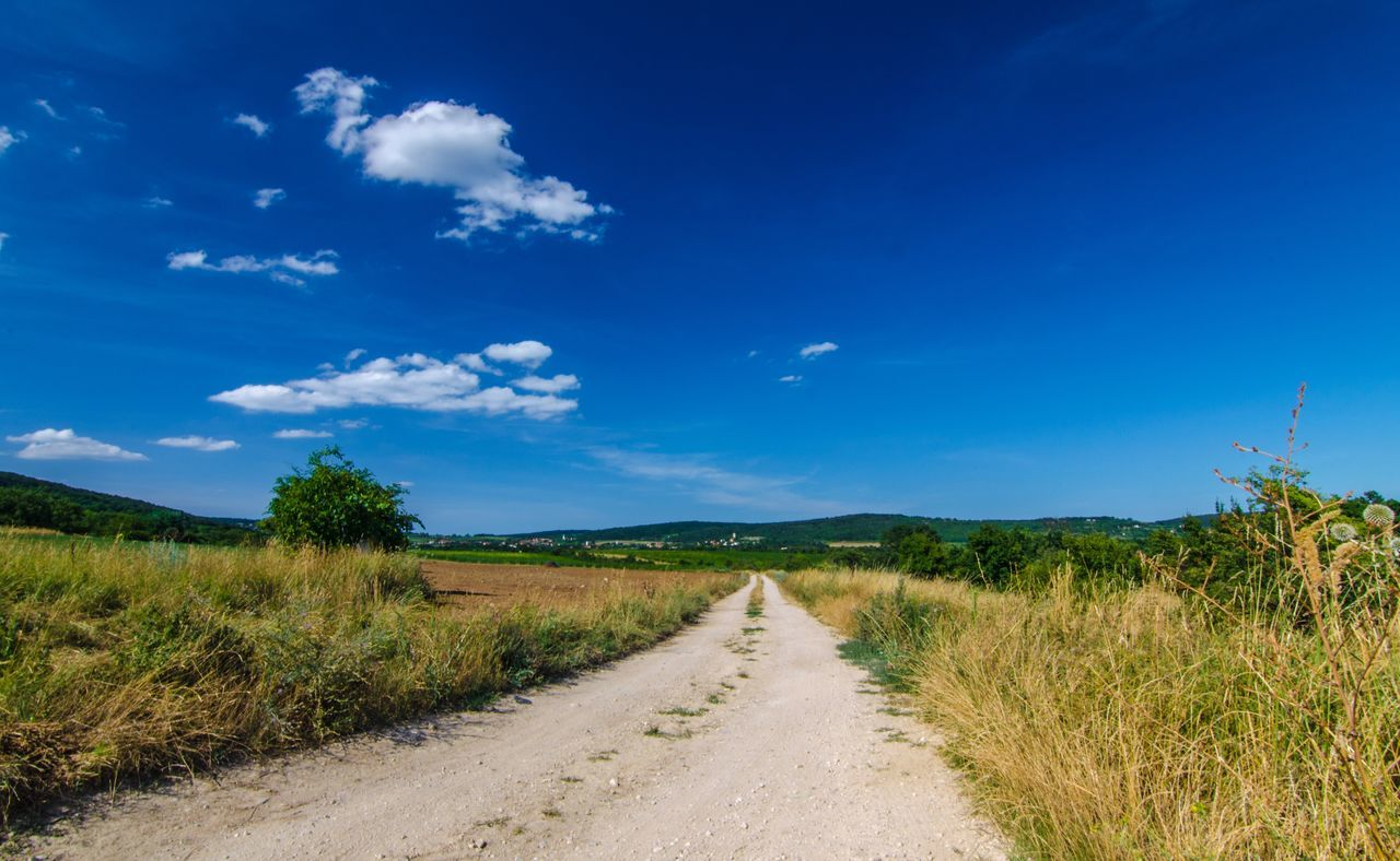 Beautiful stock photos of hungary, Blue, Day, Empty Road, Field