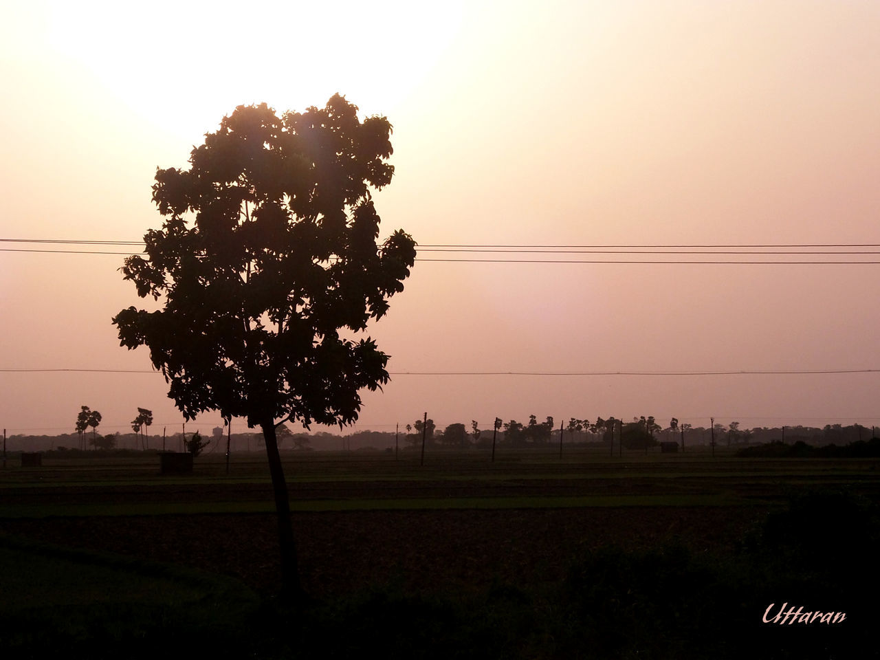 The Great Outdoors - 2015 EyeEm Awards Eye Em Best Shots - Nature Nature Photography Eyem Best Shots Nature_collection Landscape Banglar Mukh Tadda Community EyeEm Best Shots - Landscape EyeEm Best Shots - Sunsets + Sunrise Creative Light And Shadow