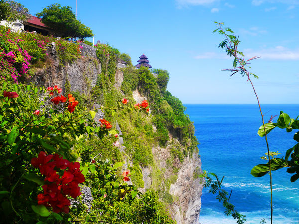 Uluwatu I Bali Beauty In Nature Blue Cliff Day Flower Growth INDONESIA Mountain Nature No People Ocean Outdoors Plant Scenics Sea Sea And Sky Seascape Sky Tree Uluwatu Uluwatu Temple Water Sommergefühle
