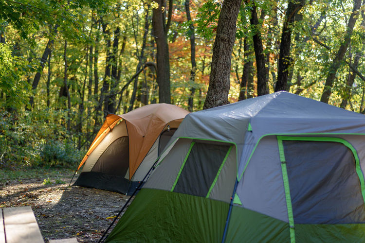 two tents on campsite in early morning light in autumn Camping Camping Out Campsite Dew Nature Sporting Goods Beauty In Nature Camp Camping Camping Trip Colorful Trees Day Forest Nature No People Outdoors Picnic Table Rewilding Site Tents Tree Tree Trunk Vacation