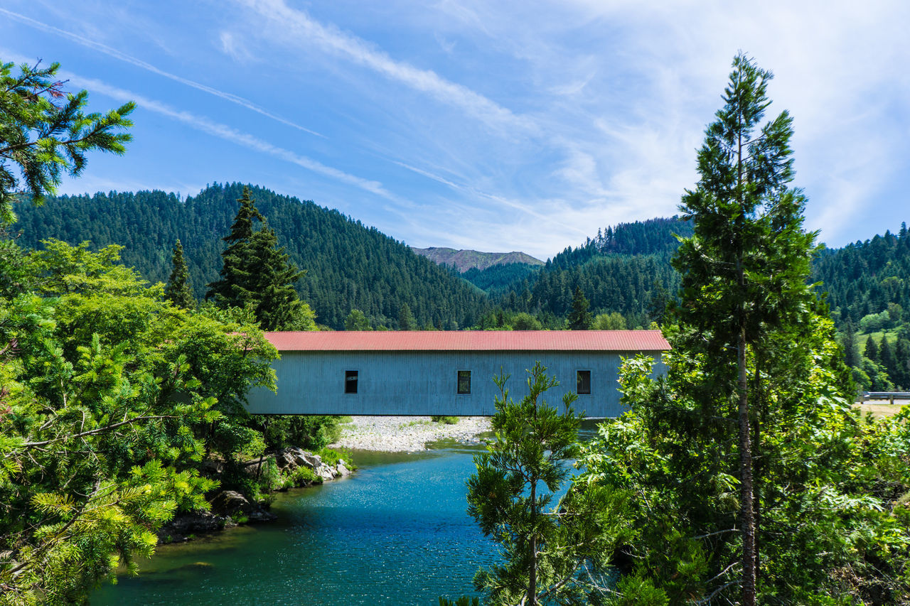 tree, beauty in nature, nature, day, tranquil scene, sky, scenics, built structure, tranquility, no people, outdoors, plant, architecture, water, growth, blue, green color, mountain, river