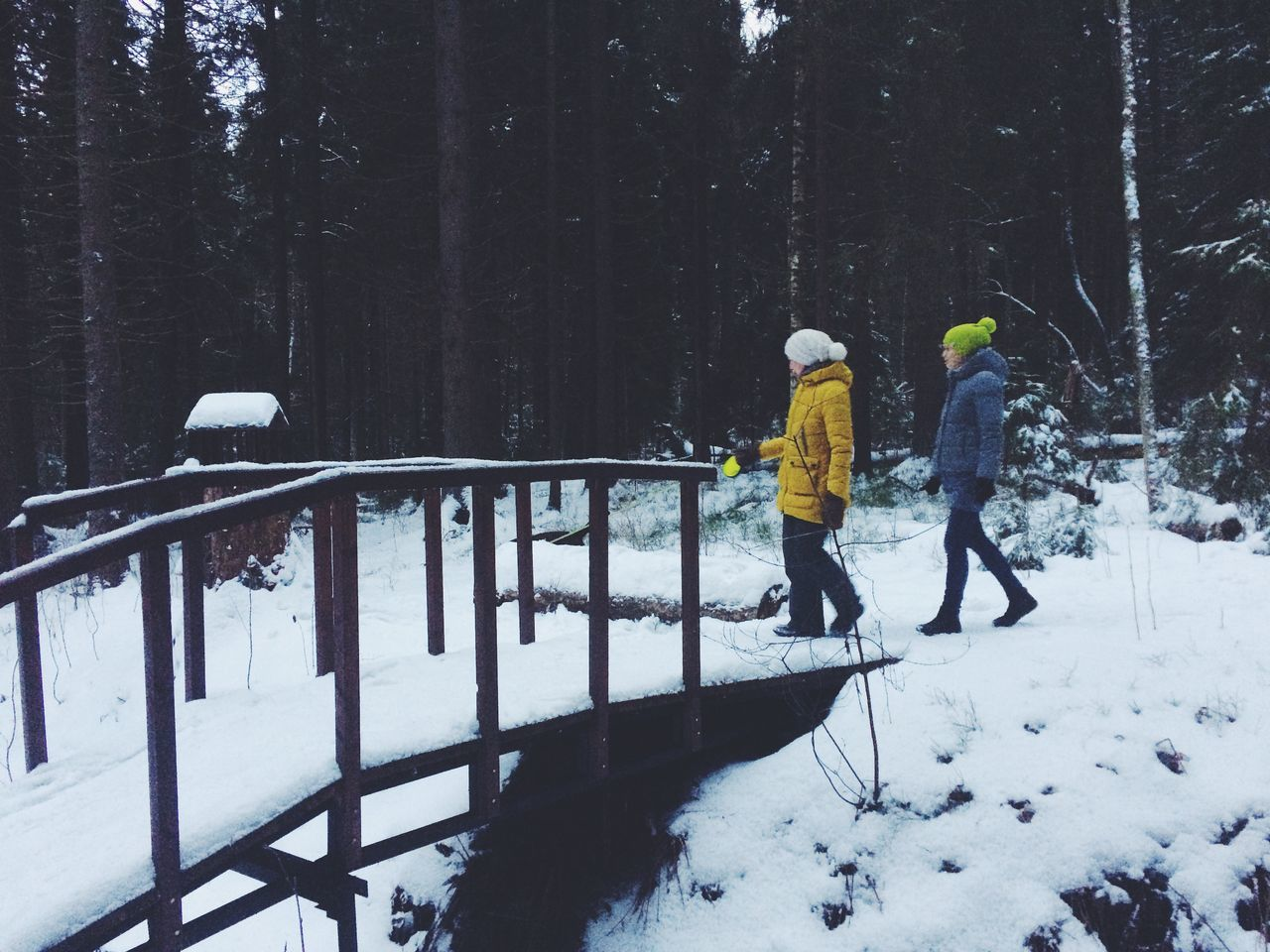 Adult Adults Only Beauty In Nature Cold Temperature Day Forest Headwear Landscape Leisure Activity Men Nature Outdoors People Ski Holiday Snow Snowflake Snowing Togetherness Tree Two People Warm Clothing Weather Winter Young Adult
