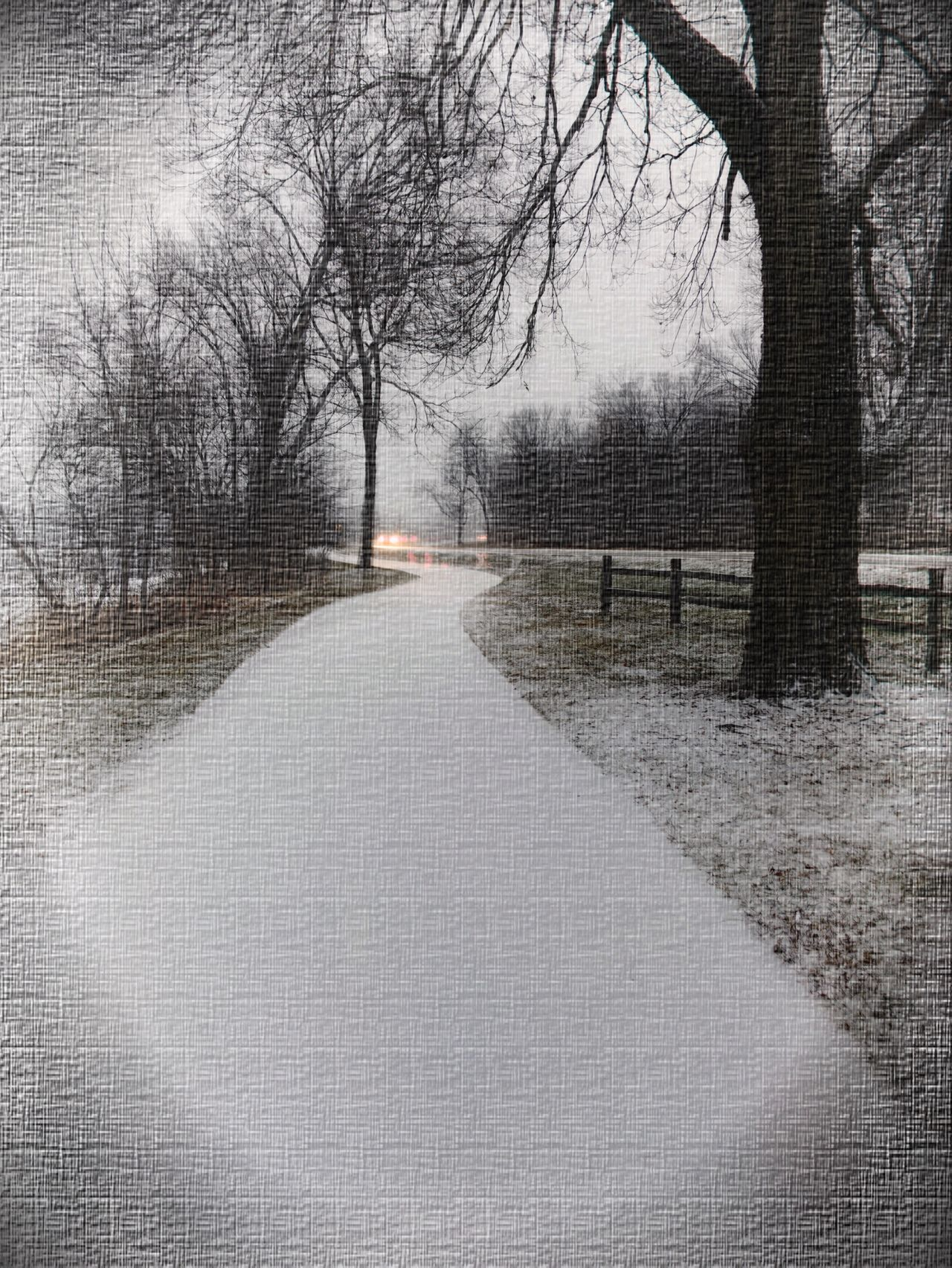 Winter Wonderland Tree Winter Snow Cold Temperature Bare Tree Weather Nature Branch No People Outdoors Day Road Snowing Beauty In Nature Tranquility Fox River The Fox River At Montgomery, Illinois My Own Style Of Beauty The Week On EyeEm