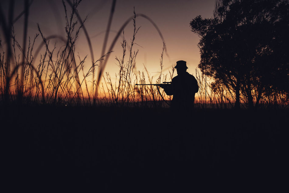 Wide angle shot of hunter standing in long grass with firegun on farmland Agriculture Aiming Field Hobby Hunter Hunting Lifestyle Long Grass Man Morning Nature Observe People Permit Shooting Shotgun Silhouette Skill  Sniper Sunrise Weapon Western Wild Animals Wilderness Wildlife