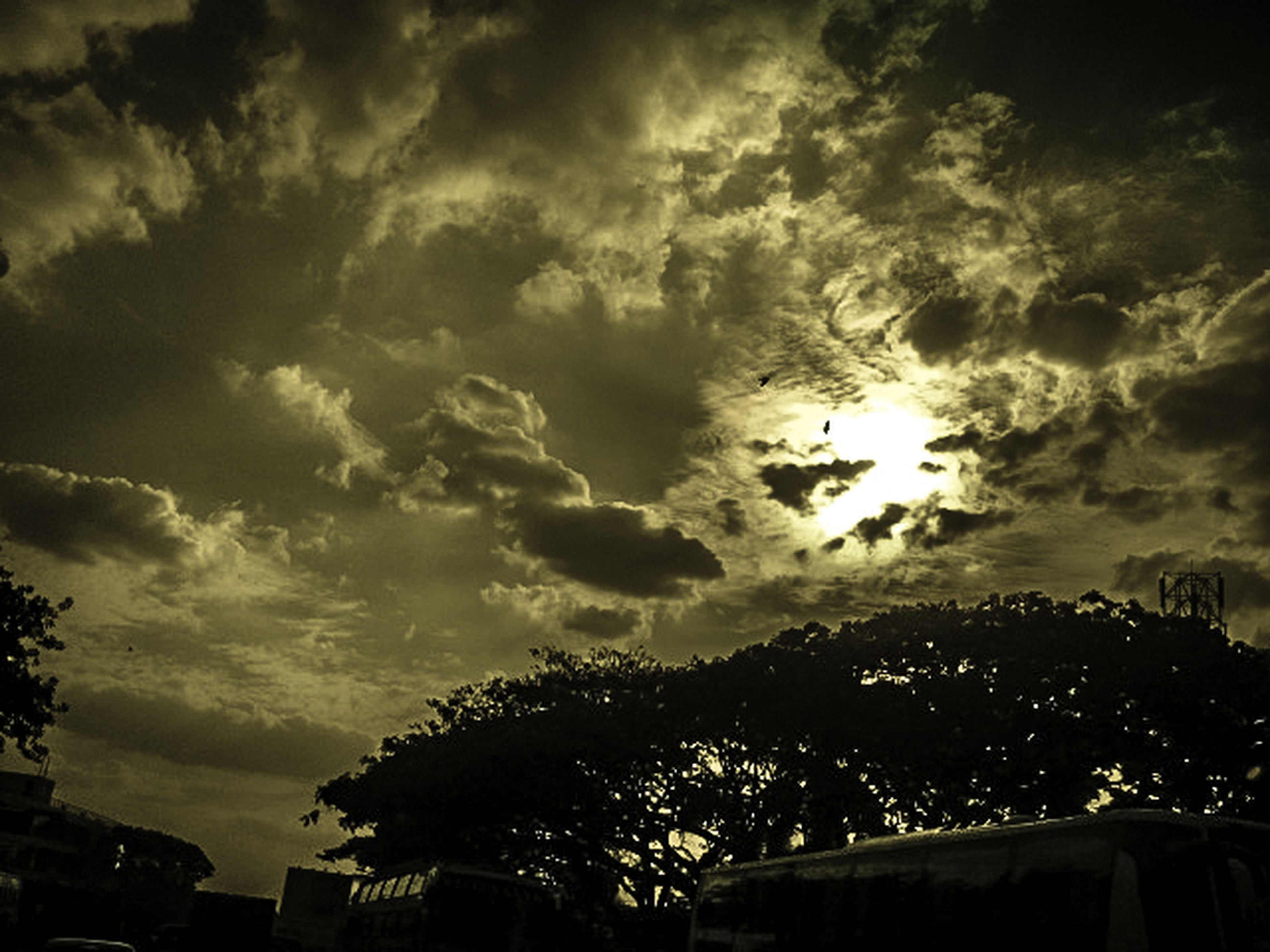 sky, tree, cloud - sky, low angle view, cloudy, building exterior, built structure, architecture, cloud, silhouette, nature, beauty in nature, outdoors, weather, no people, growth, city, scenics, dusk, house