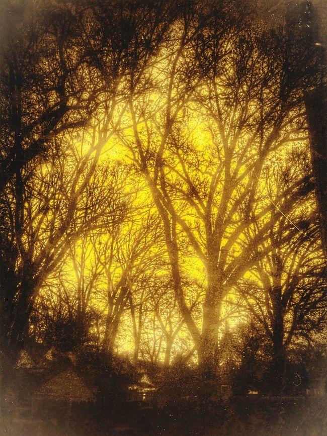 Strange night.... Darkness And Light Monochrome Melancholic Landscapes Taking Photos