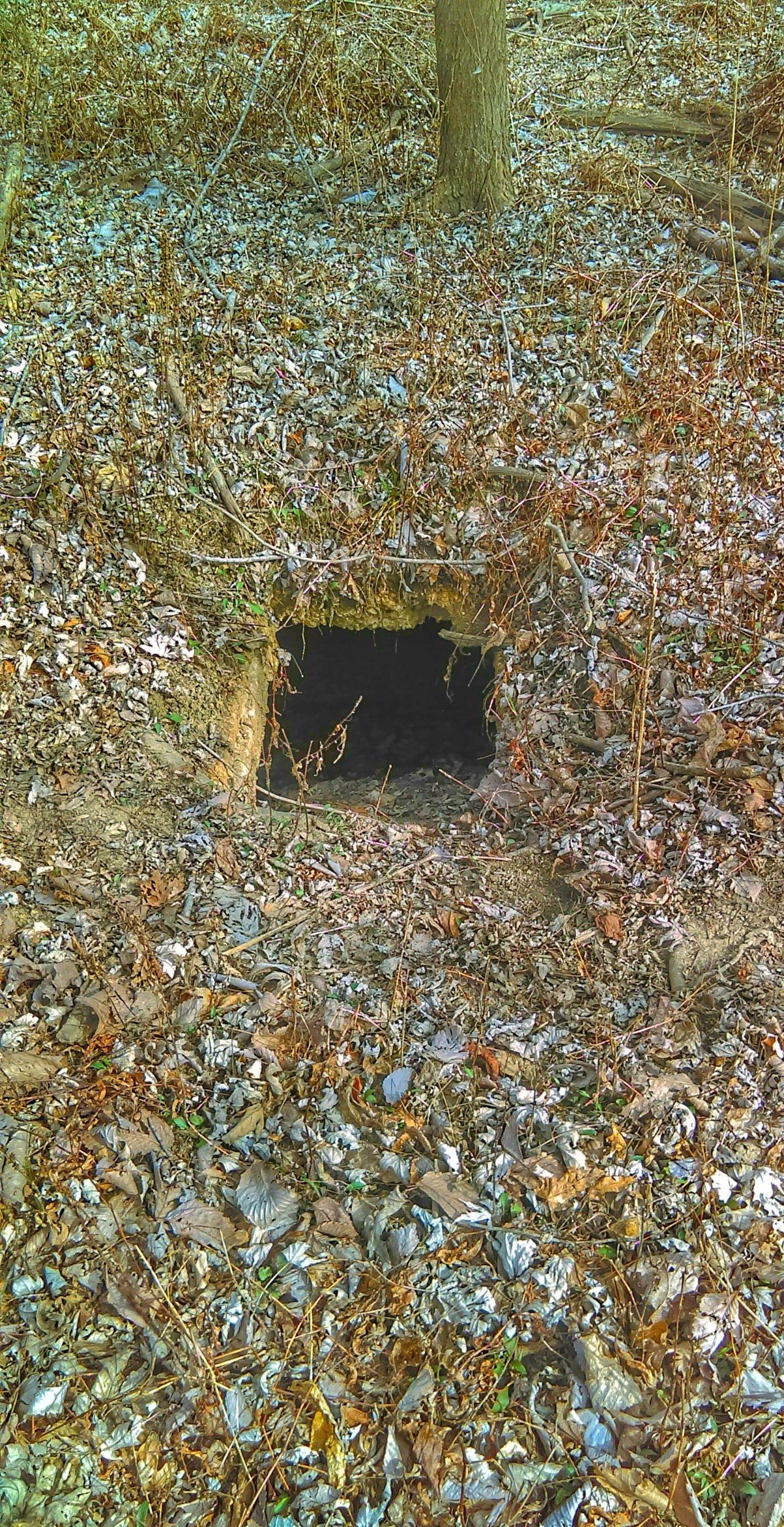 The Strangest Places Trapdoor Mother Vs Nature No People Secret Place
