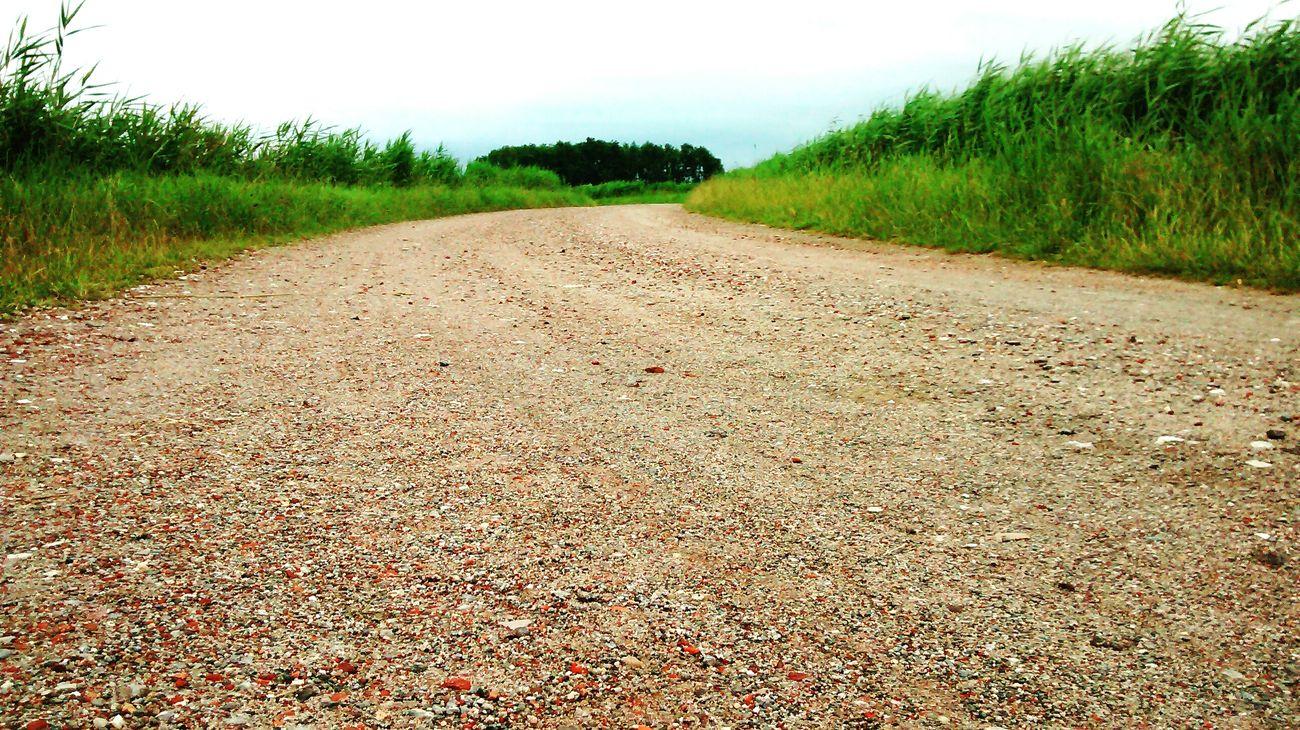 Paths Weg Dirt Ein kleiner Weg