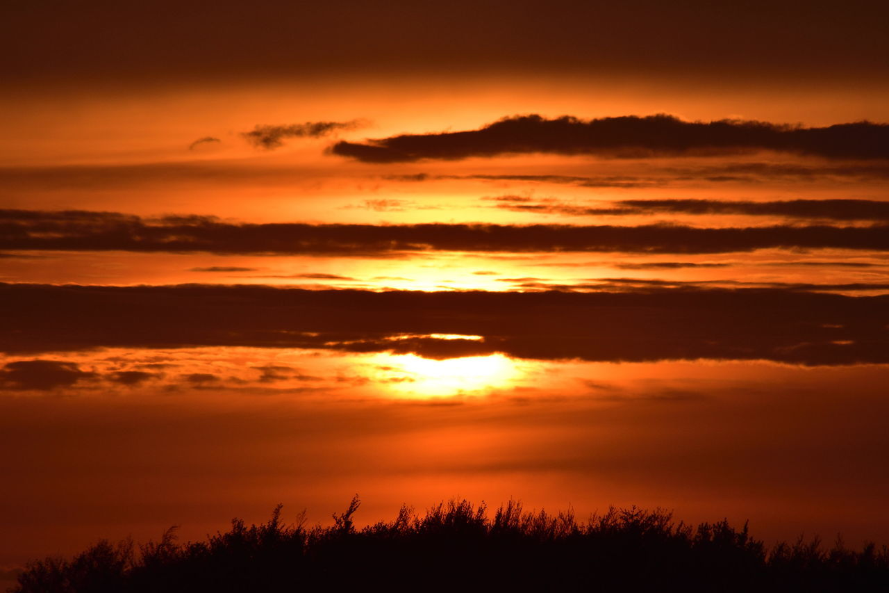 Sunset Sunset_collection Sunset Silhouettes Sunset #sun #clouds #skylovers #sky #nature #beautifulinnature #naturalbeauty #photography #landscape Sunsetporn Sunset And Clouds  Sunset In Germany Sonnenuntergang Sonne Sonnenstrahlen Nikon D5500 Nikonphotography Nikon