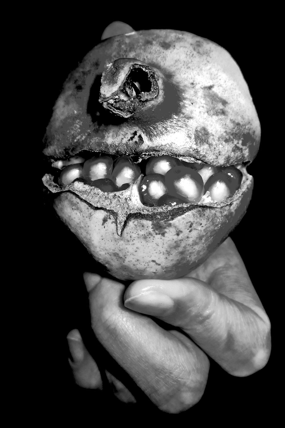 Happy Halloween Hand Fruit Pomegranate Imagination Cyclops Scary Face Gona Get You