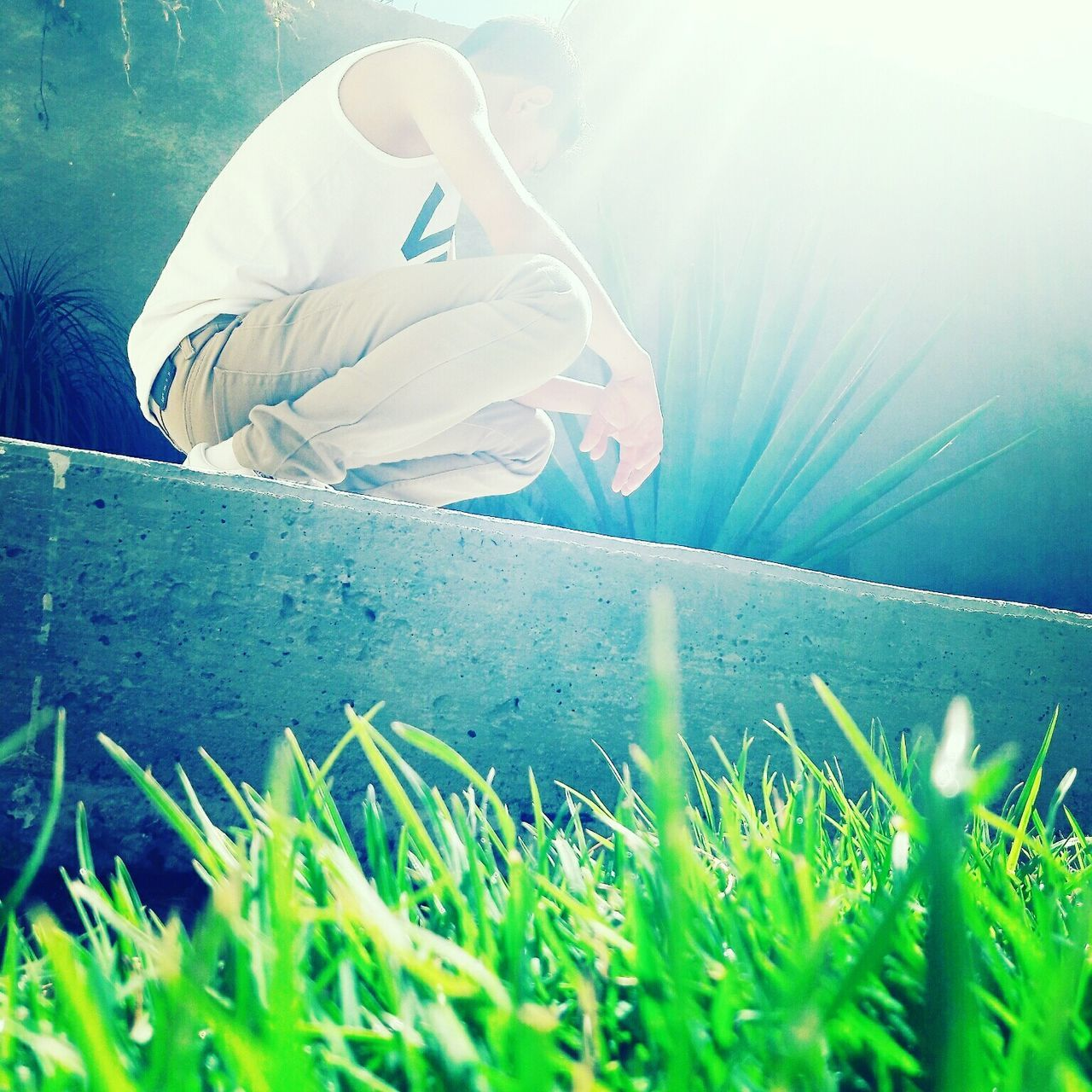 grass, real people, one person, sunlight, day, outdoors, women, nature, human hand, people