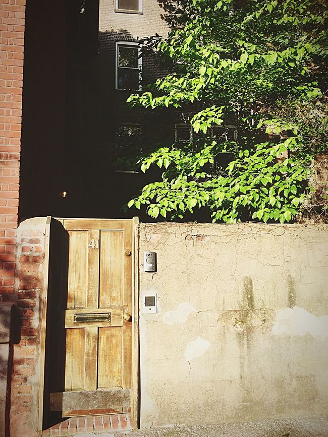 NYC NYC Photography Building Exterior Facade Building Woodendoor ChelseaNYC Manhattan USA Sunset Built Structure Architecture Door Wood - Material No People House Day Plant Outdoors Growth