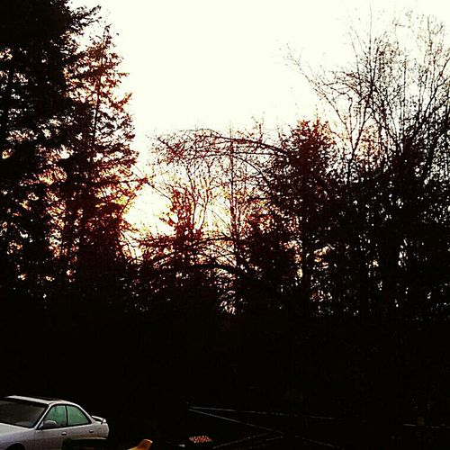 Beautiful sunrise this cold frosty morning PNW At Its Finest Sunrise Electric Sky