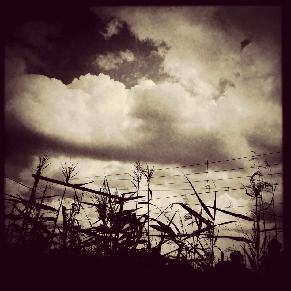 ⌚Black&White⏰ Iphoneonly Streamzoofamily Clouds And Sky well i hear my train coming....!!!!!