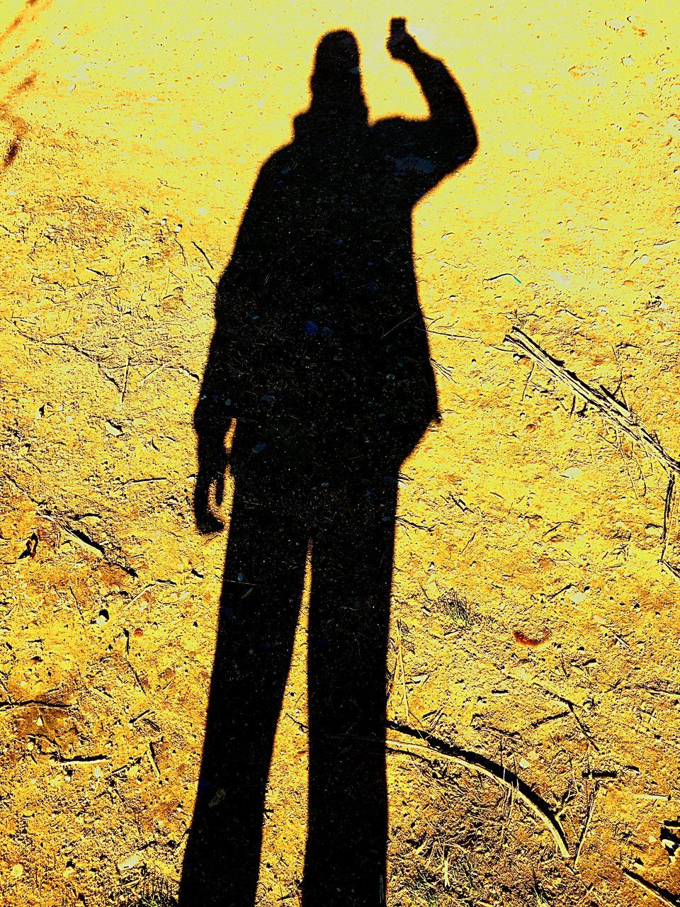 shadow, focus on shadow, real people, silhouette, sunlight, lifestyles, outdoors, leisure activity, photographing, men, one person, day, standing, selfie, people