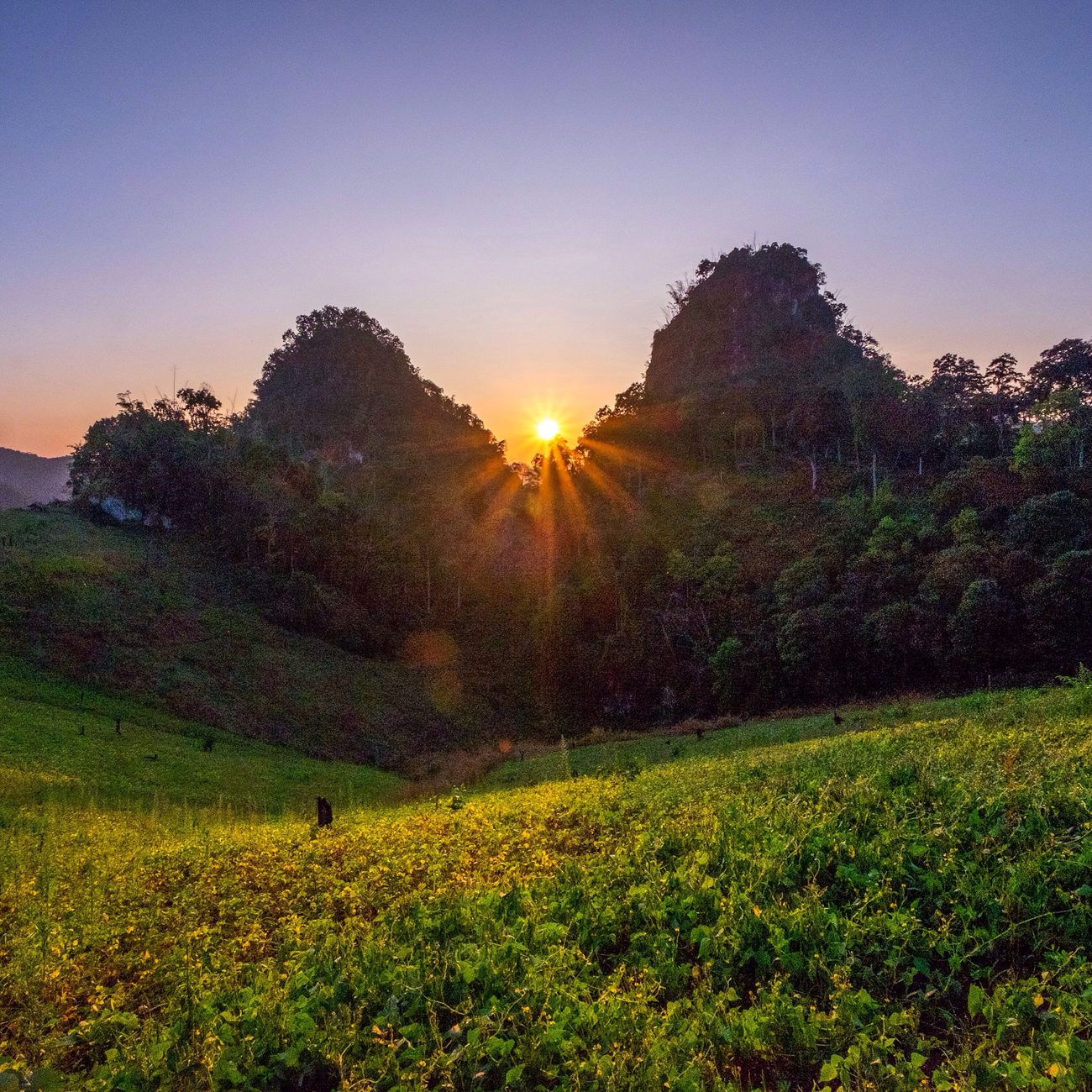 In the mountains of Mae Hong Son, Thailand! Traveling Adventure Club Eye4photography  Thailand Southeastasia EyeEm Gallery Landscape Landscape_Collection Mountains Sunset Sunset_collection