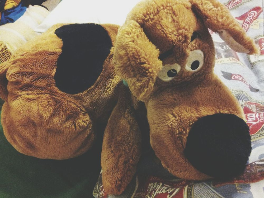 the bae Scoobydoo Scooby Stuffed Animal Goodnight