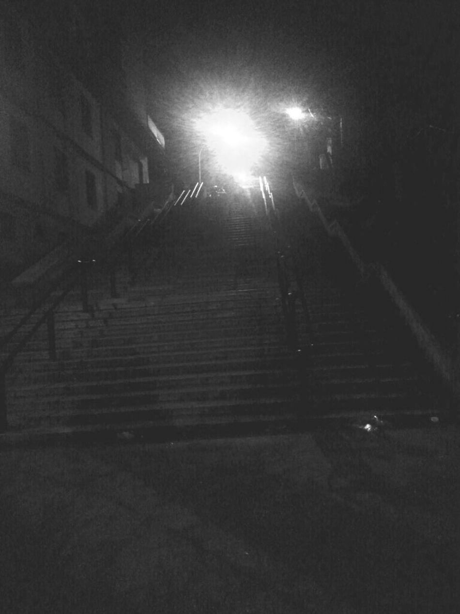 Monteverde Vecchio Viale Dei Quattro Venti Night Streamzoofamily