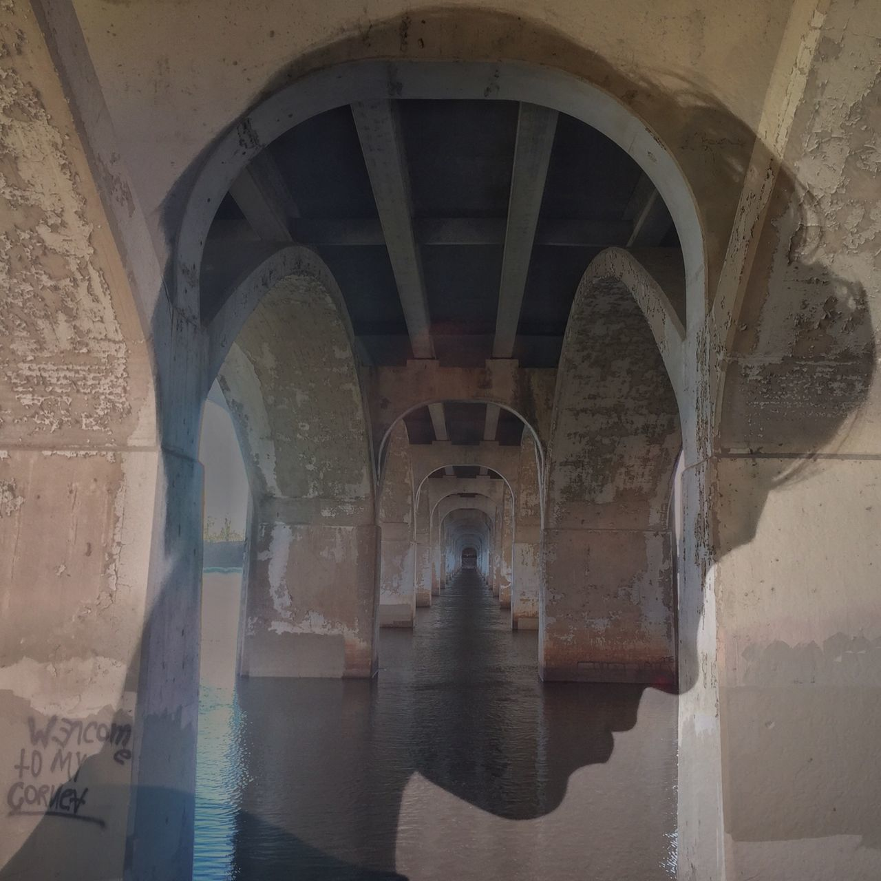 Teen's Mind Arch Architectural Column Architecture Bridge Built Structure Profile Sillouette Superimposed Teen Wolf Underneath Water