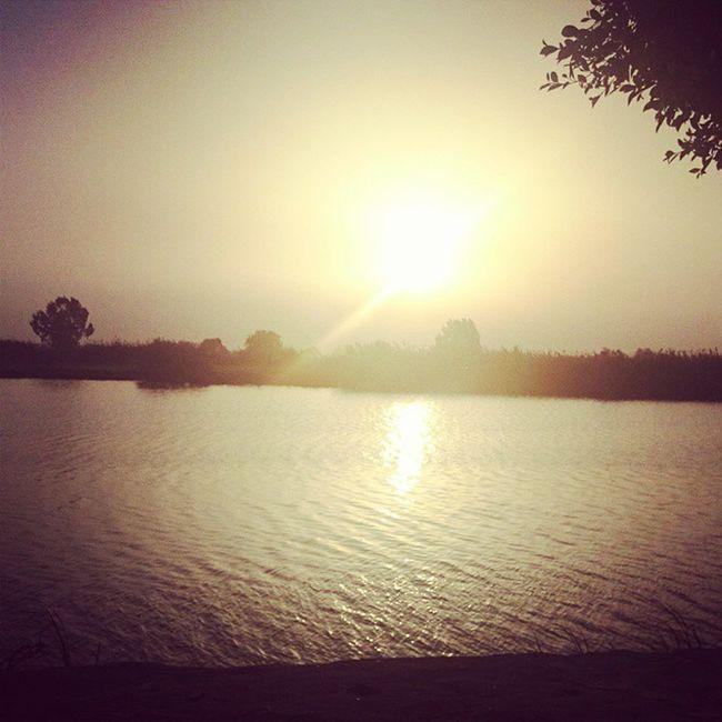 الغروب على ضفاف نهر النيل دمياط 😍😘