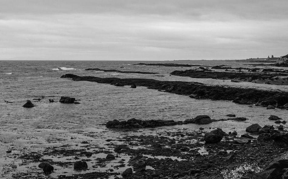 Fife  Scotland Coast Coastline Water Forth Seascape Monochrome Monoart Black And White Blackandwhite Bnw