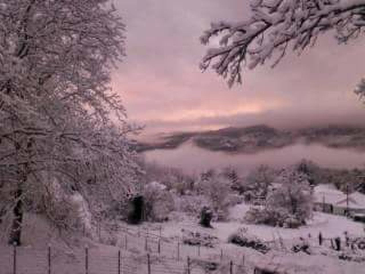 winter, cold temperature, snow, tree, nature, scenics, weather, beauty in nature, outdoors, tranquil scene, sky, no people, sunset, tranquility, landscape, frozen, rural scene, fog, day, mountain, branch, freshness
