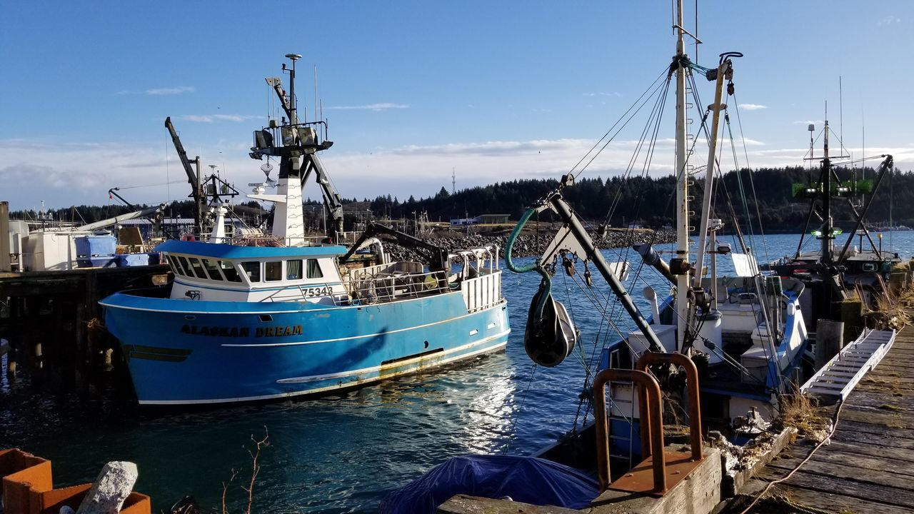 Sea Reflection St Paul Harbor Water Nature Harbor Pacific Seafood Day Fish Photography Outdoors Wildlife Dock Alaska Kodiak Island Seafood Voyageur Country Imaging Commercial Fishing Transportation Sky Cannery Commercial Dock Nautical Vessel Long Line Fishing Boat