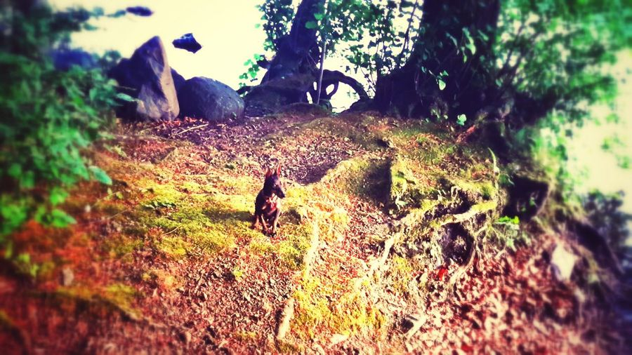 Olive au Lac First Eyeem Photo