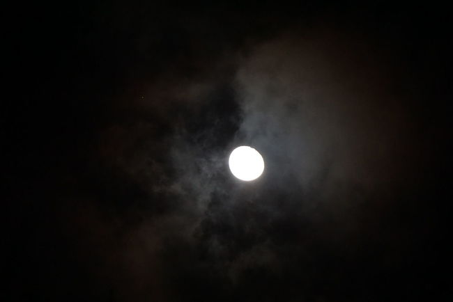 The Moon Is Bright Tonight. The Night View Outdoor Photography