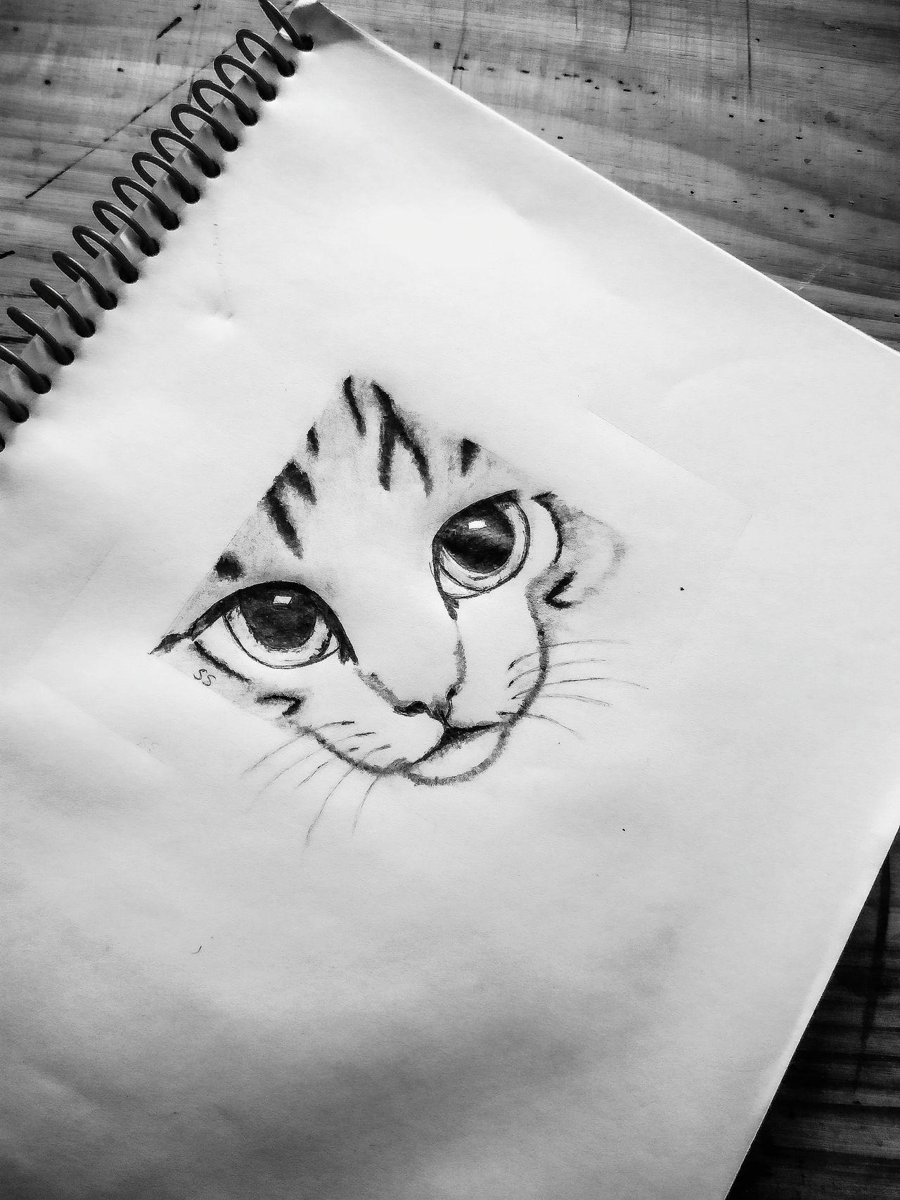 Love Heart Shape Close-up Smiling Nature No People Outdoors Day Cat Sketching Sketch Art Sketchbook Cat Sketch EyeEm Gallery EyeEmNewHere
