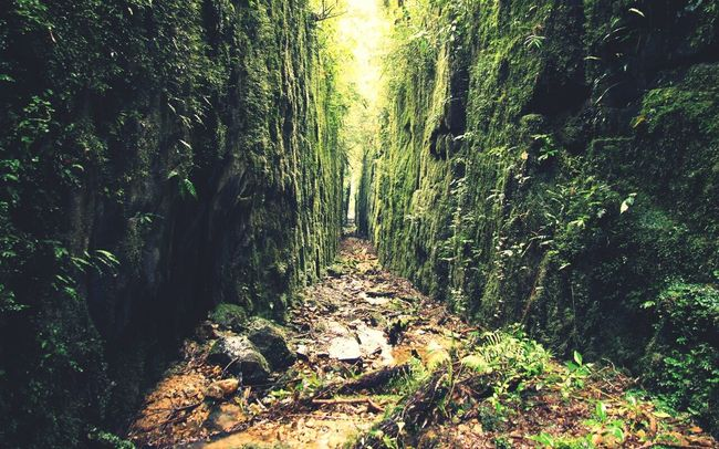 Natureza Mission Mystery Campodozinco Canion