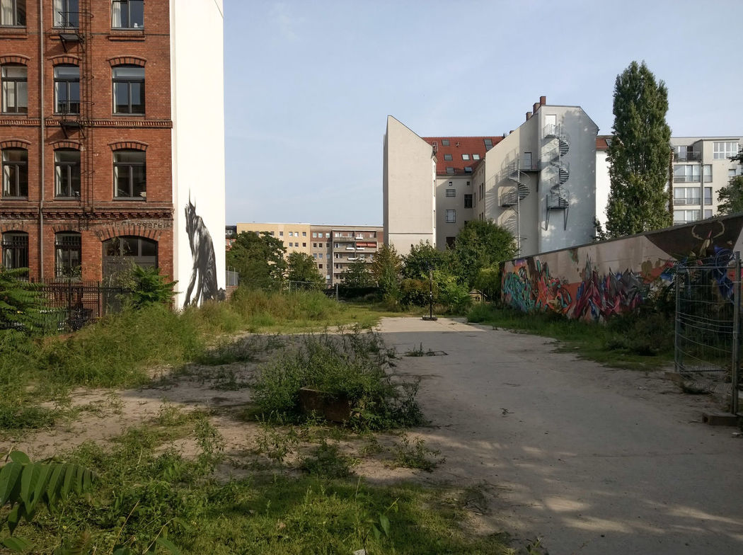 Architecture Backyard Berlin Berlin Mitte Blue Building Building Exterior Built Structure City Day Exterior Green Color Nature No People Outdoors Plant Residential Building Residential District Residential Structure Sky Streetart StreetArtEverywhere Streetlife Walkway