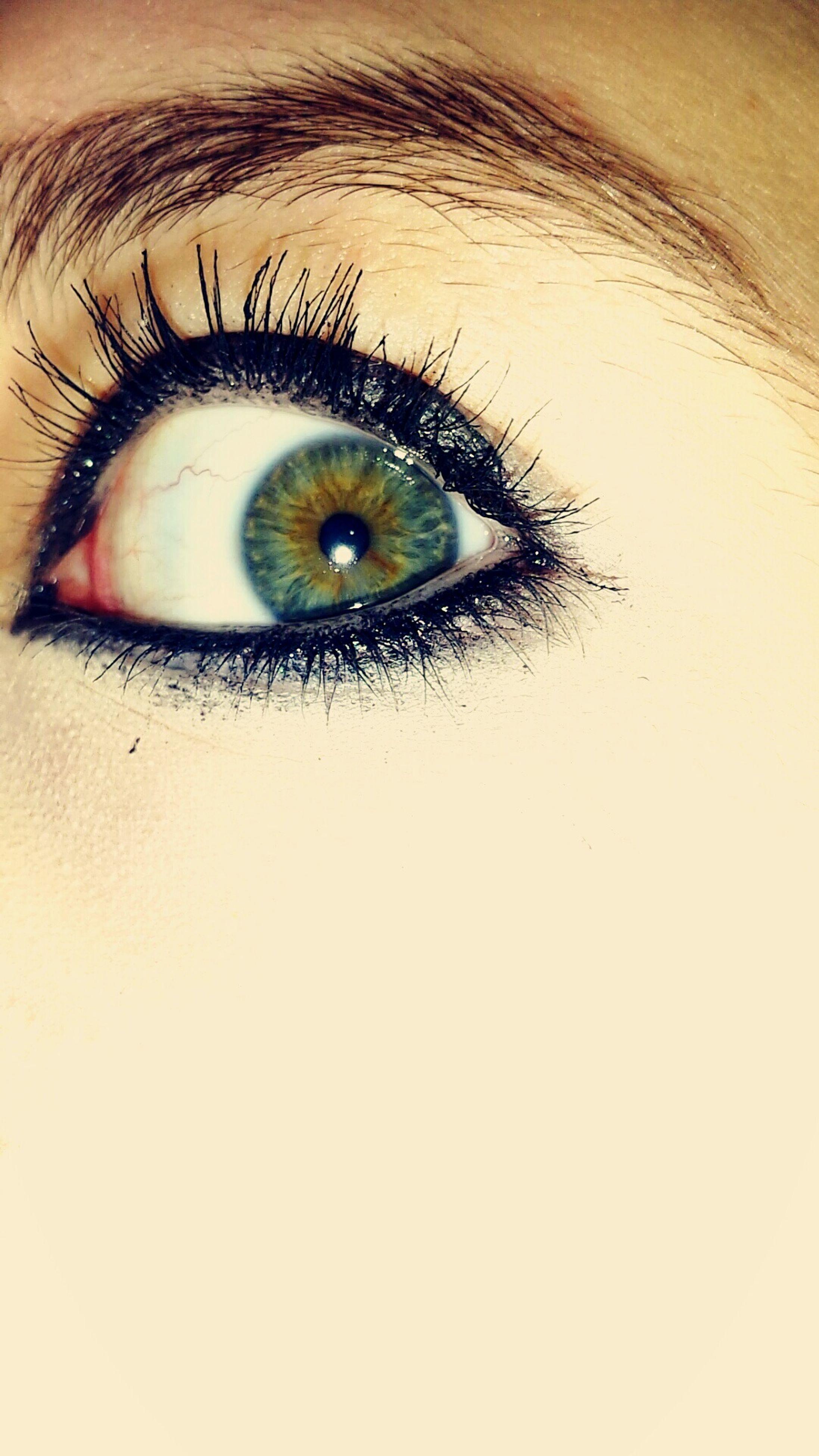 human eye, close-up, studio shot, eyelash, eyesight, white background, indoors, sensory perception, extreme close-up, portrait, looking at camera, eyeball, full frame, part of, human face, iris - eye, human skin