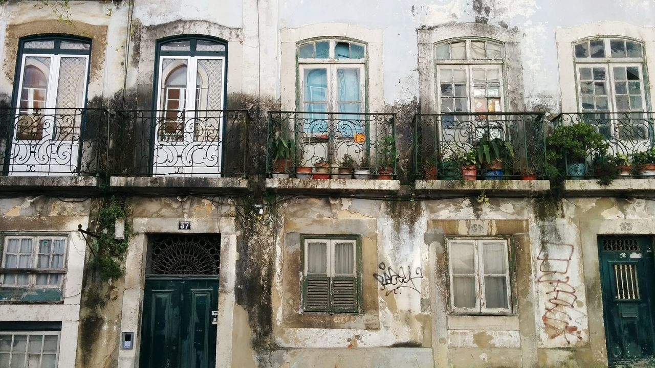 window, architecture, built structure, building exterior, damaged, travel destinations, residential building, weathered, no people, outdoors, tree, day